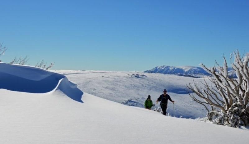 Falls Creek, Alpine Touring Program